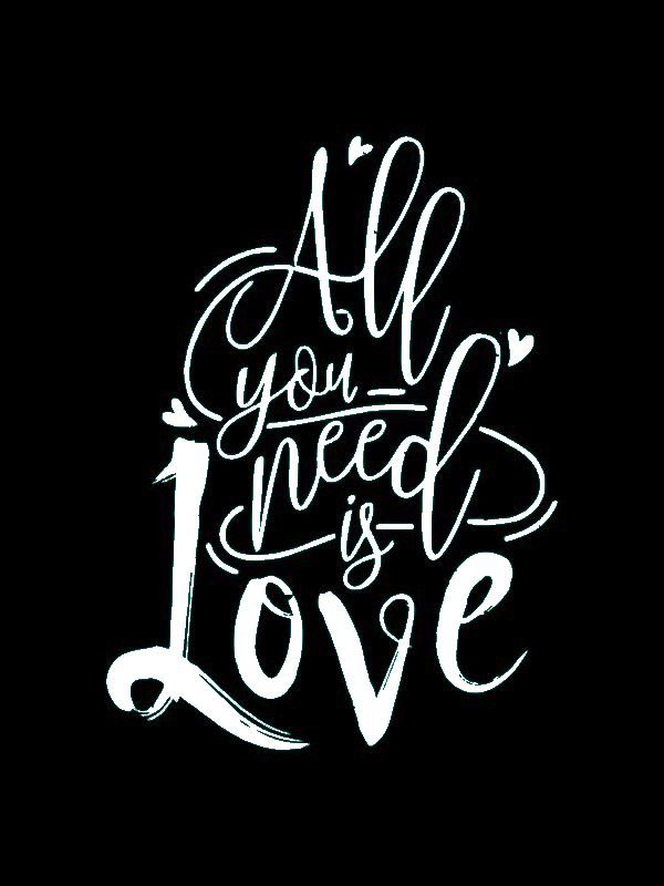 VV024 Vinyl - All You Need Is Love
